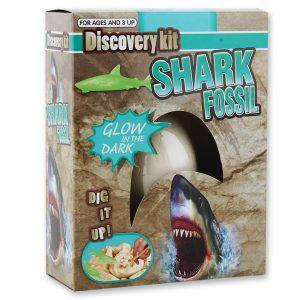 Shark_2179